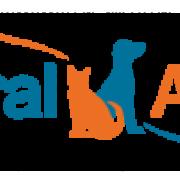 Central Animal Veteriner Kliniği