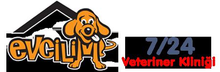 Evcilim Veteriner Kliniği