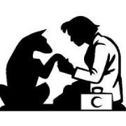 İlgi Veteriner Kliniği