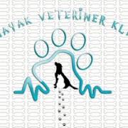 Patiayak Veteriner Kliniği