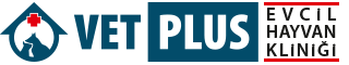 Vet Plus Veteriner Kliniği