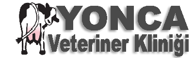 Yonca Veteriner Kliniği