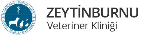 Zeytinburnu Veteriner Kliniği